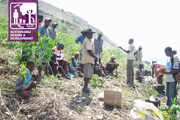 Integrating Tree Planting with Farming in Haiti.