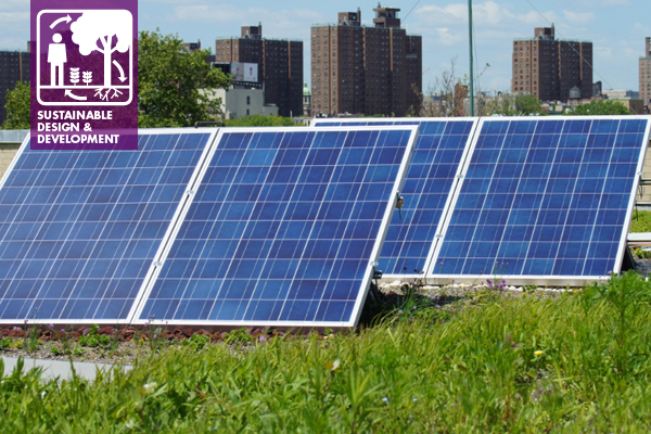 Solar Green Roof, NYC Parks and Recreation Demonstration Roof