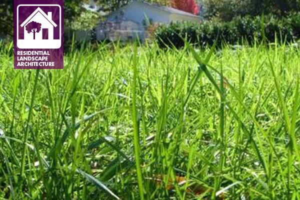 image: Walnut Ridge Grounds Care