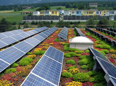 Green Roof Or Pv The Field