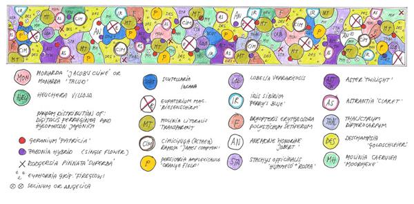 Oudolf's Planting Diagram (Courtesy Piet Oudolf)