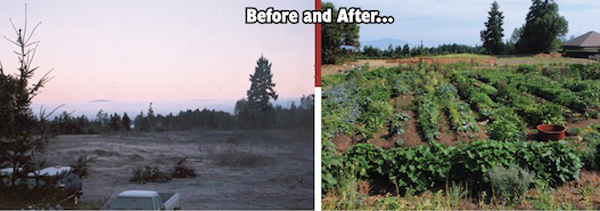 http://grist.org/list/2011-07-14-jail-time-for-gardening-now-officially-a-trend/