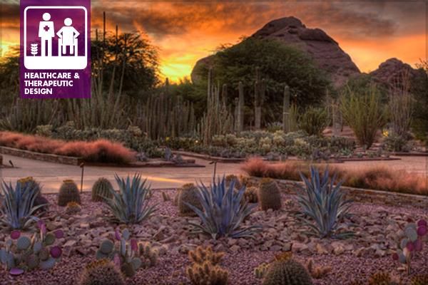 Desert Botanic Garden, Phoenix, AZ. Ottosen Entry Garden.
