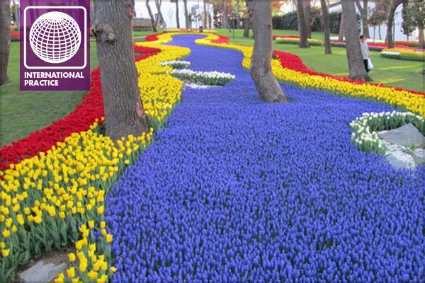stream of tulips emirgan park istanbul turkey image eric kopinski - Tulip Garden Near Me