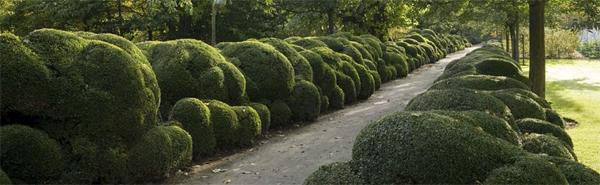 Wirtz family gardensimage: Wirtz International Landscape Architects
