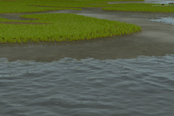 Coastal Wetland Design with Inundation Assessment (Coordination with Hydrologist, Biologist, and Geotechnical Engineer) image: David Leonard
