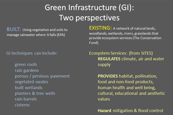 "Information on the types and functions provided by ""Built"" and ""Existing"" Green Infrastructure systems. image: Martha Sheils"