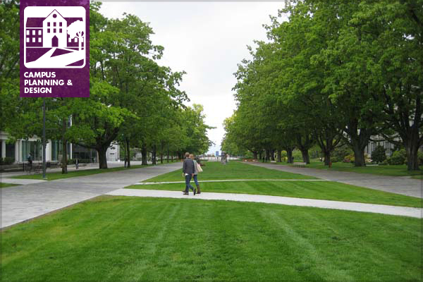 The Main Mall at the University of British Columbia image: Dean Gregory