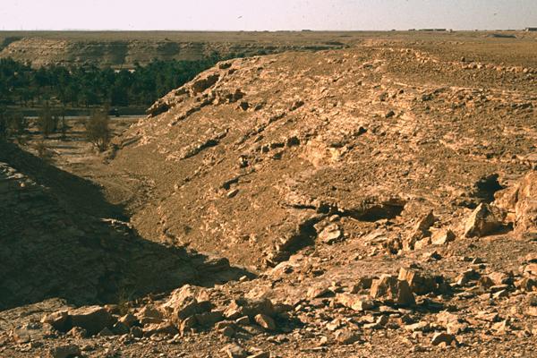 Wadi Hanifah image: Erik Mustonen