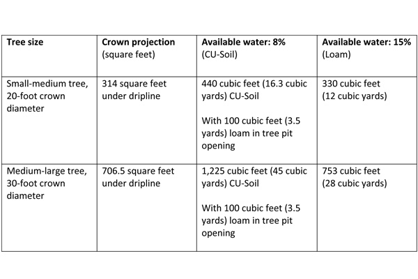 Soil volumes of CU-Structural Soil™, and loam necessary to support a large tree in the Midwest or Mid-Atlantic US without irrigation after 3 years of establishment. It would take between 1.3-1.6 times the amount of structural soil to equal the water holding capacity of loam with 15% water holding capacity. image: Nina Bassuk