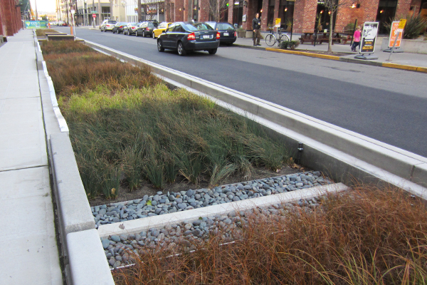 Stormwater Infrastructure Streetscapes The Field