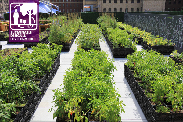 Riverpark Farm, located in a New York City neighborhood that previously had no grocery stores with fresh food, uses portable planters made from milk crates on a stalled building project site so it can move to its final location when the building is developed.  image: April Philips