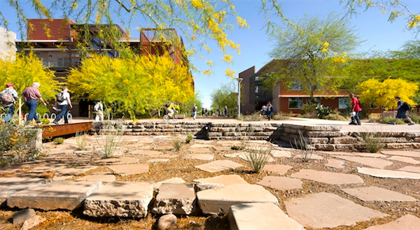 Arizona State University Polytechnic Campus By Ten Eyck Landscape Architects  Image: Bill Timmeman