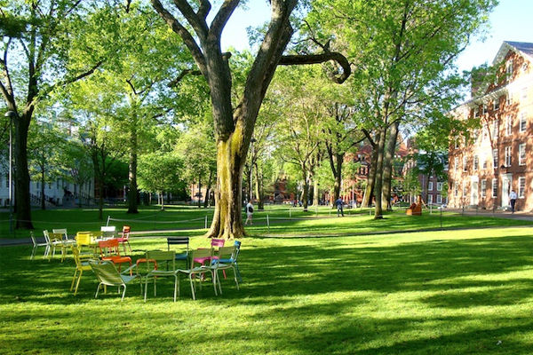 Harvard Yard Restoration at Harvard University by Michael Van Valkenburgh Associates image: Mark Hough