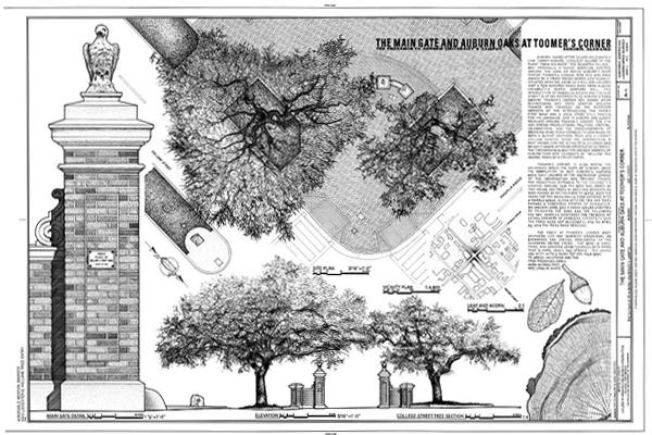 The Main Gate and Auburn Oaks at Toomer's Corner (HALS AL-3), Auburn, AL image: Doug Bacon and Ivan Vanchev
