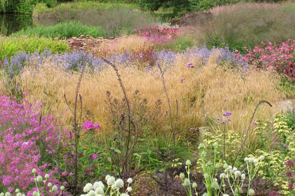 Piet oudolf s garden for hauser wirth the field for Landscapes in landscapes piet oudolf