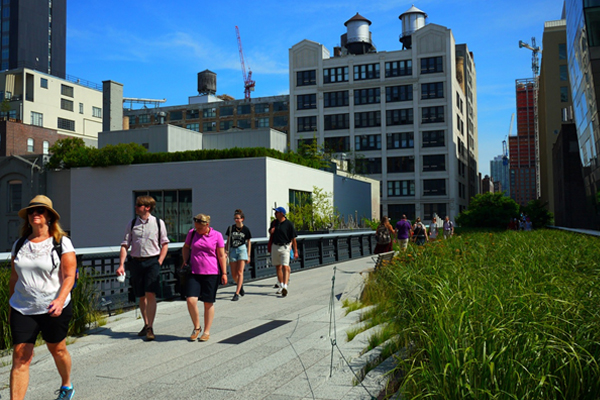 The High Line, New York, by James Corner Field Operations (Project Lead), Diller Scofidio + Renfro, and Planting Designer Piet Oudolf. The first section opened in 2009, the second section in 2011, and the third in 2014.  image: Xitong Li, 2013