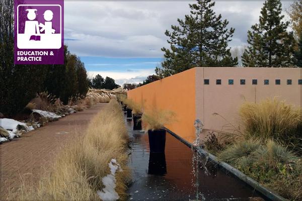 At the Denver Botanic Gardens image: Jules Bruck