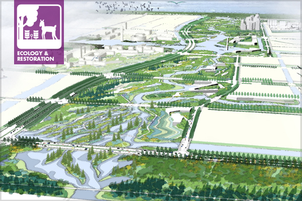 """The Ningbo Eco-Corridor project transforms an uninhabitable brownfield into a 3.3km-long """"living filter"""" designed to restore a rich and diverse ecosystem, and serve as a valuable teaching tool and model for sustainable urban development.  image: SWA - 2013 Analysis & Planning Honor Award Winner"""