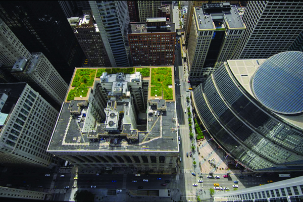 Adding Green to Urban Design - 2011 Analysis and Planning Honor Award Winner Chicago City Hall's green roof, installed in 2000, has become a symbol of a commitment to sustainability. The building is shared with the county, where no green roof exists, providing a research laboratory for measuring impacts on temperature and air quality. image: City of Chicago and Hitchcock Design Group