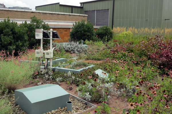 Microcosm trials of three levels of green roof intensity were nested within the intensive green roof image: John K. Buck, Civil & Environmental Consultants, Inc.