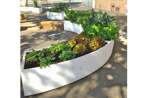 TKC's modular raised beds image: The Kitchen Community