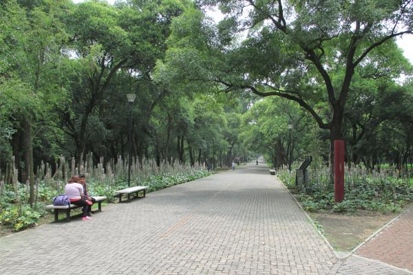 Chapultepec Park promenade image: Erik Mustonen