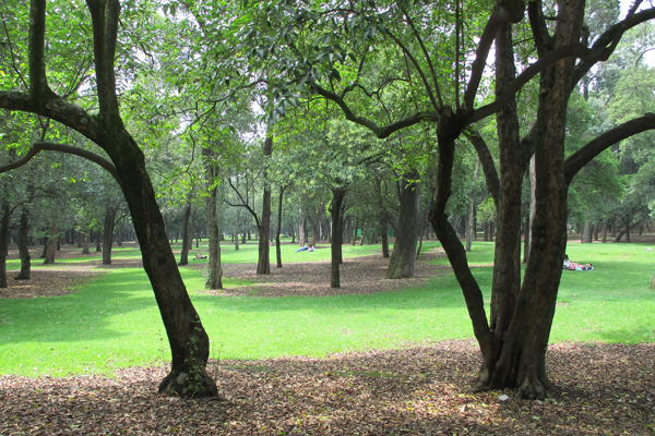 Chapultepec Park urban lungs image: Erik Mustonen