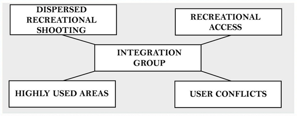 Issue working group and integration group structure image: Rachel Glass