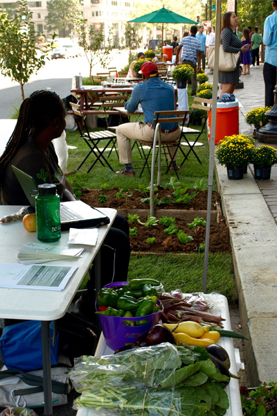 DC UrbanGreen's spot on Pennsylvania Avenue image: Alexandra Hay