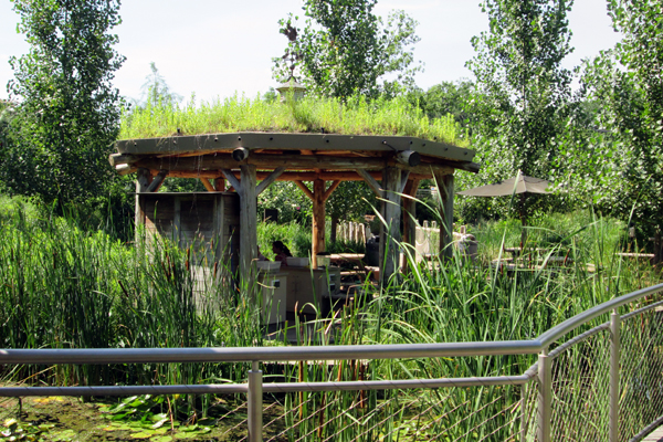 Pavilion in Texas Wetlands exhibit image: Lisa Horne