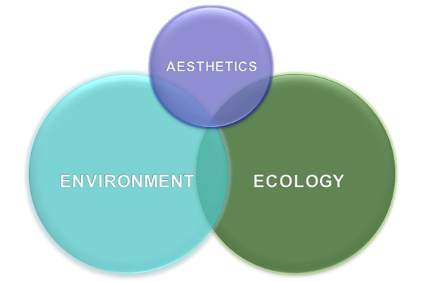 Figure 4: Aesthetic, environmental, and ecological balance in a prairie plant palette image: David Hopman