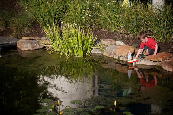 Dell Children's Medical Center of Central Texas image: Jody Horton