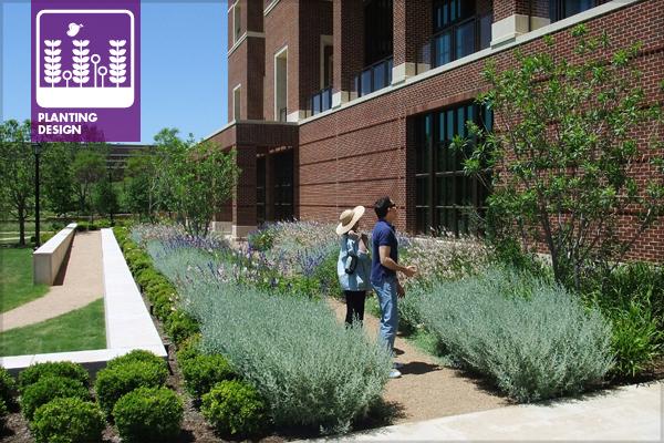Figure 1: Bush Center south Terrace on opening day in 2013 image: David Hopman