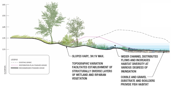 Ecological assessments can influence the design process. A conceptual design section shows existing grade, designed restoration grade, and a proposed revision to the designed grade to increase ecological functionality in a restored stream channel. image: Great Ecology