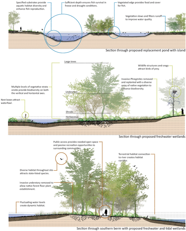 Sections depicting proposed ecological improvements for a brownfield site communicate the range of potential benefits in ecosystem services and public amenities. image: Great Ecology
