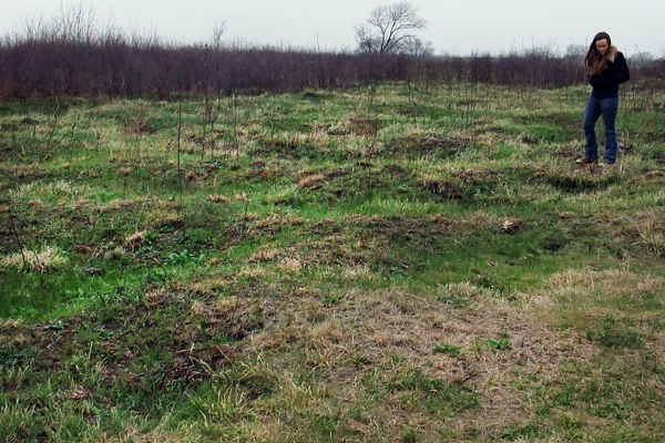 Figure 4: Natural gilgae depressions in the Clymer meadow northeast of Dallas shortly after a spring burn image: David Hopman