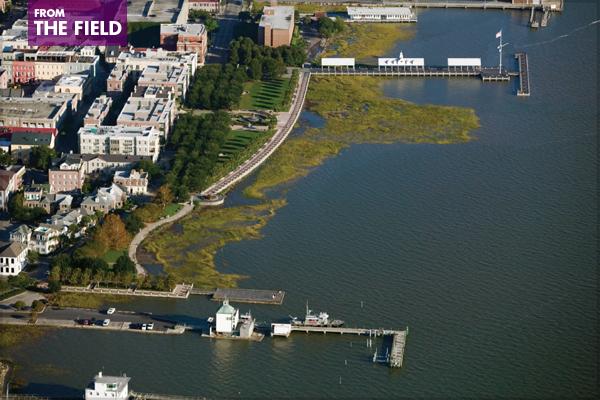 Charleston, SC - Charleston Waterfront Park, 2007 Landmark Award image: Craig Kuhner