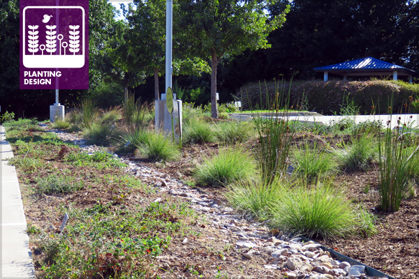 Figure 1: BRIT bioswale 2 polyculture in July 2016 after weeding and mulching have brought the planting back closer to the original design intent shown in lead image from part 8. The bioswale is now ready for hundreds of additional specified plants that will be installed in the fall once the weather cools down. image: design and photo by David Hopman