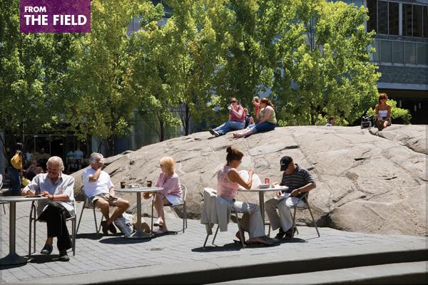 Finding Rewarding Work In Landscape Architecture The Field