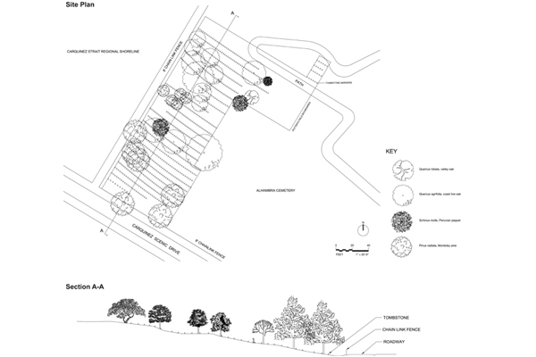 Site Plan and Section, Potter's Field, Alhambra Pioneer Cemetery, Martinez, CA image: UC Berkeley students Annalise Chapa, David Koo, Yang Liu, and Mark Wessels