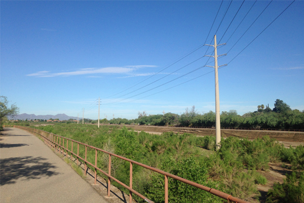 Figure 8: Light colored transmission poles, despite fading, contrast minimally with sky. Poles shown here are in the Rillito River along the Rillito River Park in Tucson, AZ. Installation date unknown. image: Ellen Alster