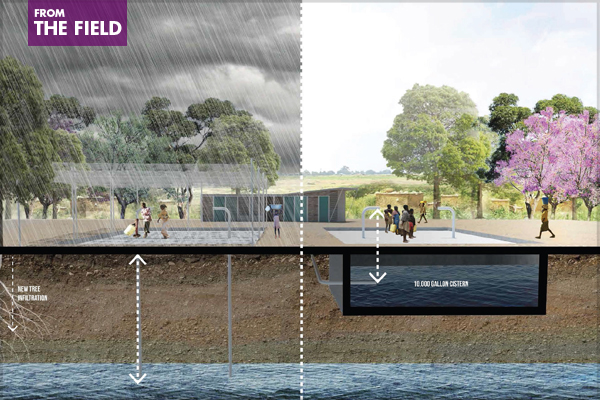 challenges in the field of landscape architecture the field