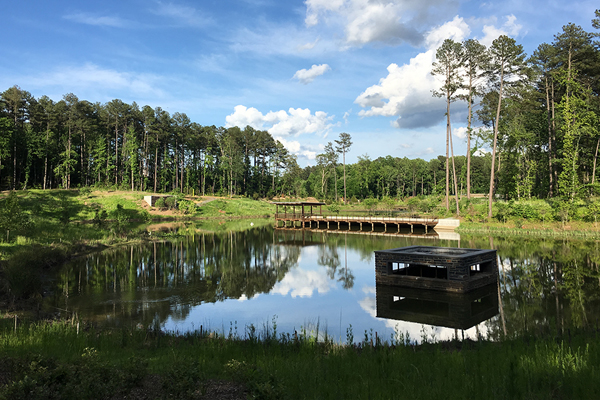 University landscape architects unite the field for Design of stormwater ponds