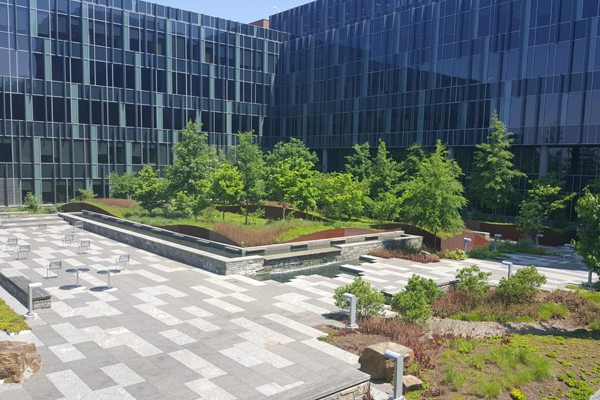 The courtyard over structure at the USCG Headquarters balances plant  performance and habitat diversity by incorporating a variety of native  plant materials ... - The Evolving Practice Of Ecological Landscape Design – The Field