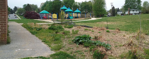 Oh for the love of butterflies and children the field for Spring garden elementary school