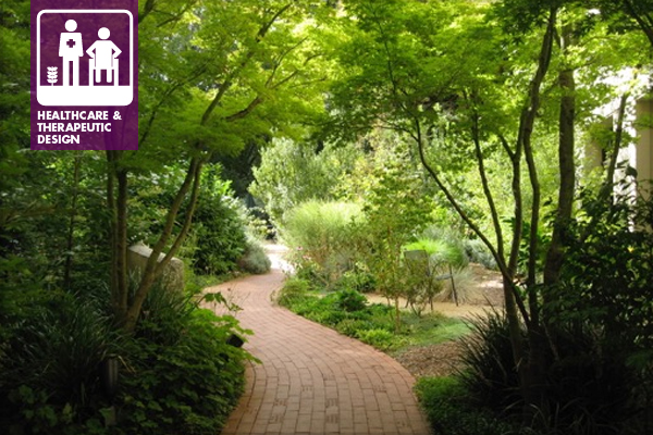 A Healing Garden Should Be: Visible And Easily Accessed From The Main  Foyer, Predominantly Green, And Should Have A Path That Tempts You To  Explore And ...