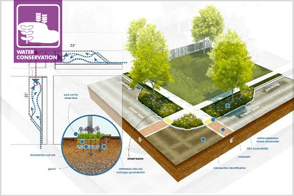 Streetscape design for stormwater runoff