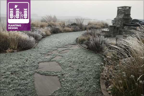Residential planting design in winter