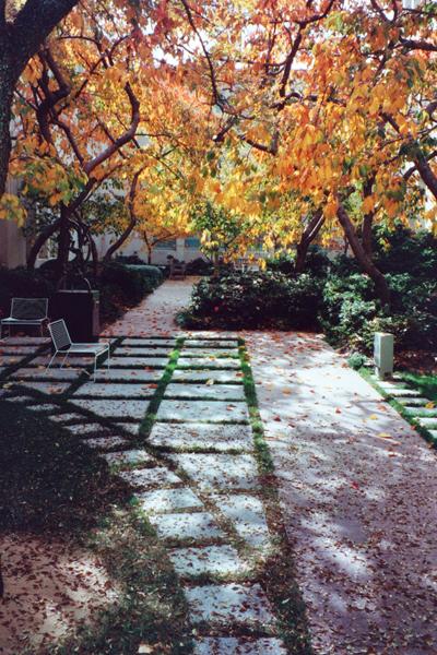 Australian Parliament House courtyard